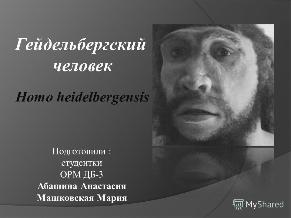 Гейдельбергский человек Homo heidelbergensis Подготовили : студентки ОРМ ДБ-3 Абашина Анастасия Машковская Мария