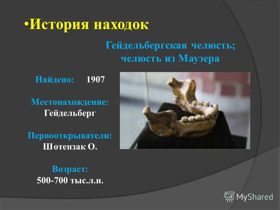 История находок Гейдельбергская челюсть; челюсть из Мауэера Найдено: 1907 Местонахождение: Гейдельберг Первооткрыватели: Шотензак О. Возраст: 500-700 тыс.л.н.