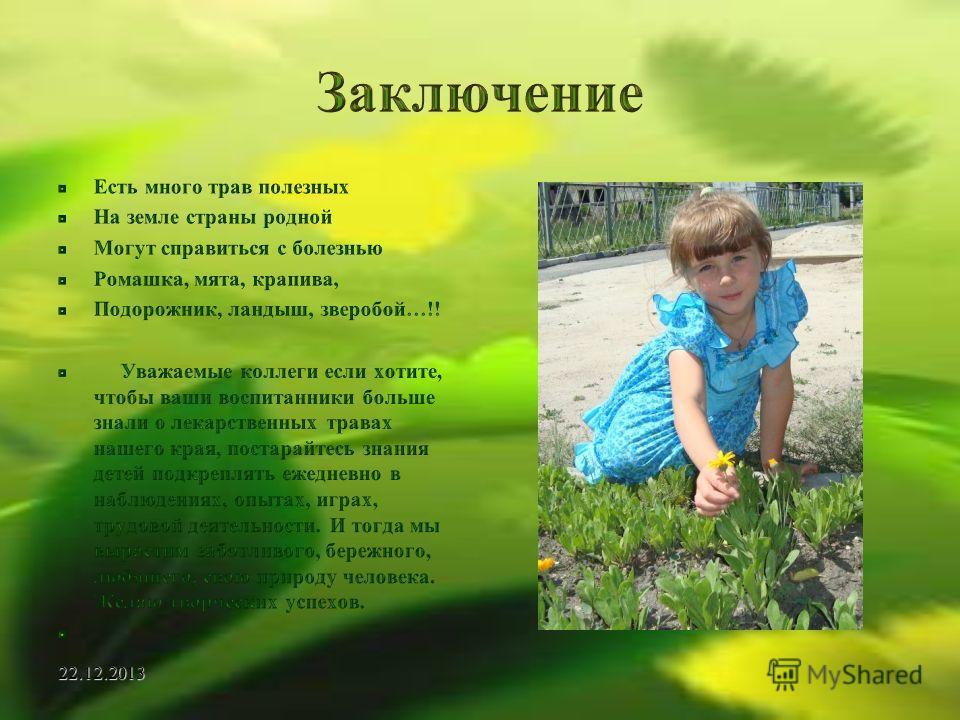 знакомим дошкольников с лекарственными растениями