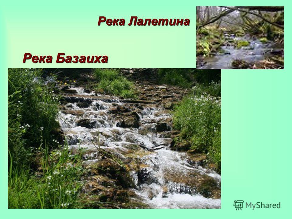 Река Базаиха Река Лалетина