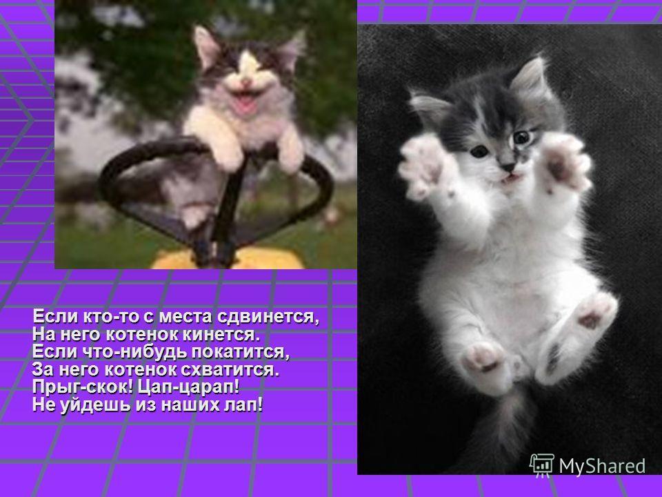 Если кто-то с места сдвинется, На него котенок кинется. Если что-нибудь покатится, За него котенок схватится. Прыг-скок! Цап-царап! Не уйдешь из наших лап! Если кто-то с места сдвинется, На него котенок кинется. Если что-нибудь покатится, За него кот