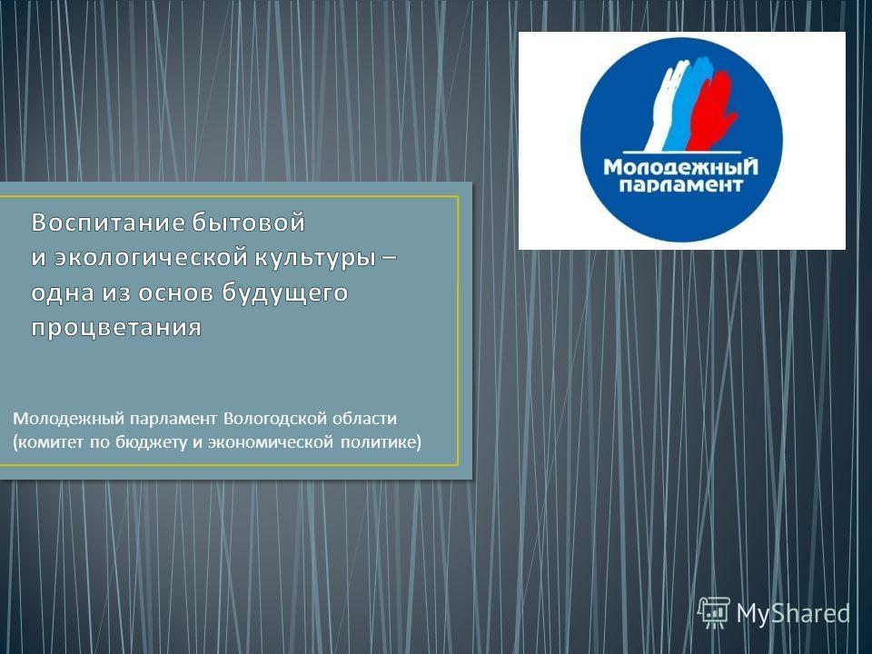 Молодежный парламент Вологодской области ( комитет по бюджету и экономической политике )