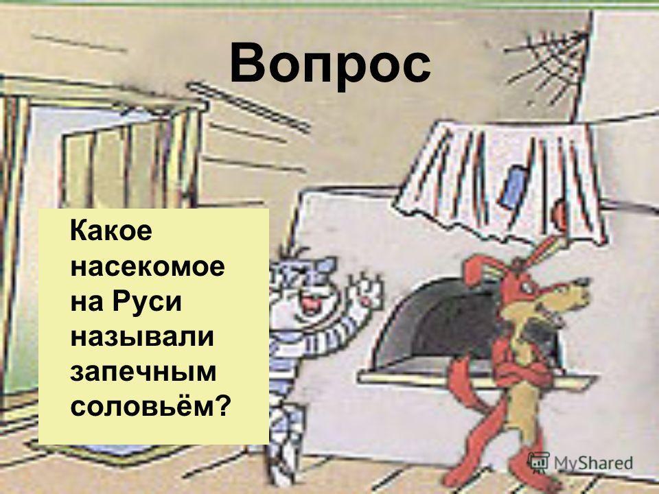 Вопрос Какое насекомое на Руси называли запечным соловьём?