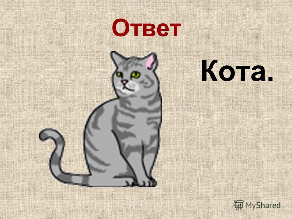 Ответ Кота.