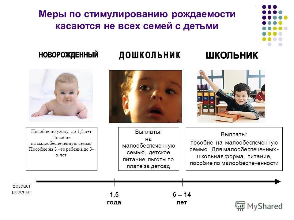 Меры по стимулированию рождаемости касаются не всех семей с детьми Пособие по уходу до 1,5 лет Пособие на малообеспеченную семью Пособие на 3 –го ребенка до 3- х лет Выплаты: на малообеспеченную семью, детское питание, льготы по плате за детсад Выпла