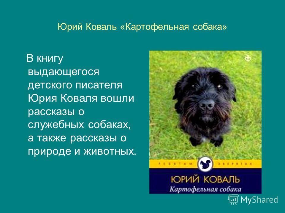 Юрий Коваль «Картофельная собака» В книгу выдающегося детского писателя Юрия Коваля вошли рассказы о служебных собаках, а также рассказы о природе и животных.