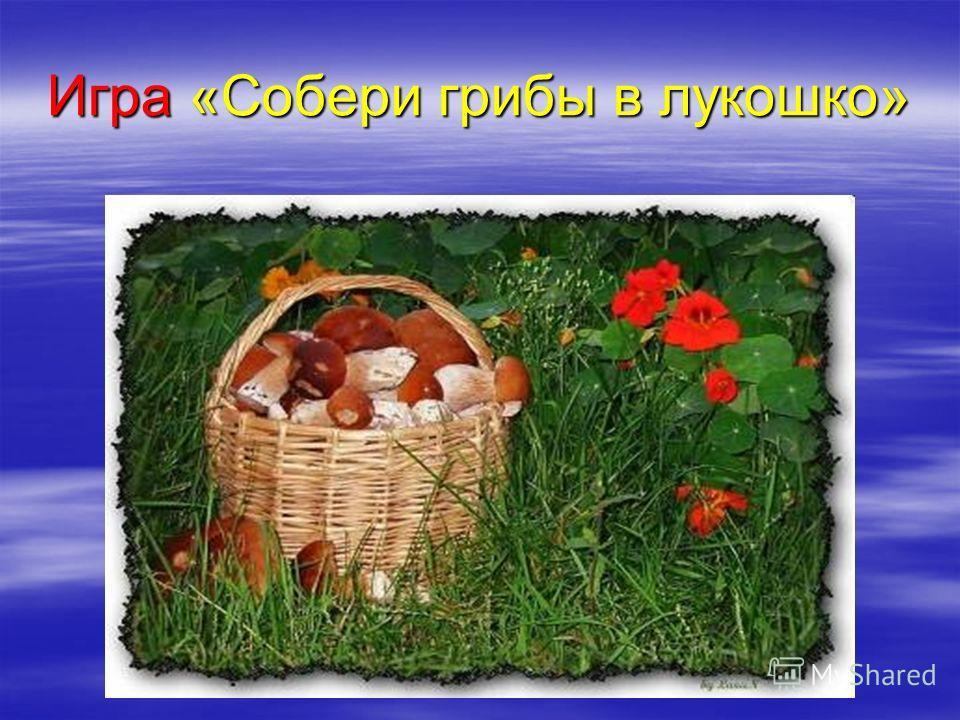 Игра «Собери грибы в лукошко»