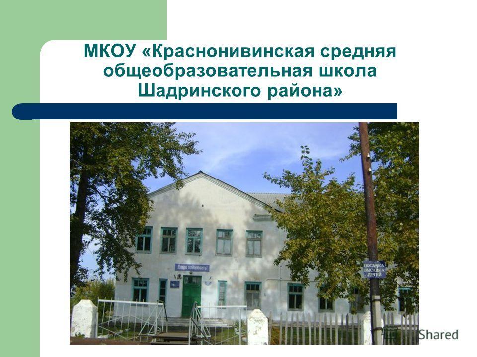МКОУ «Краснонивинская средняя общеобразовательная школа Шадринского района»