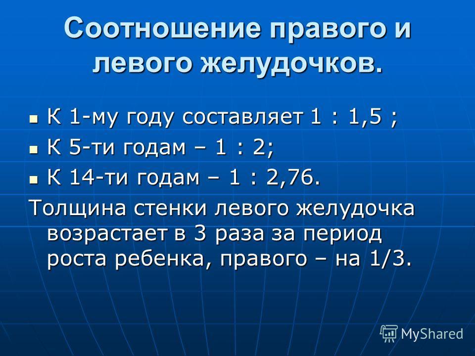 Соотношение правого и левого желудочков. К 1-му году составляет 1 : 1,5 ; К 1-му году составляет 1 : 1,5 ; К 5-ти годам – 1 : 2; К 5-ти годам – 1 : 2; К 14-ти годам – 1 : 2,76. К 14-ти годам – 1 : 2,76. Толщина стенки левого желудочка возрастает в 3