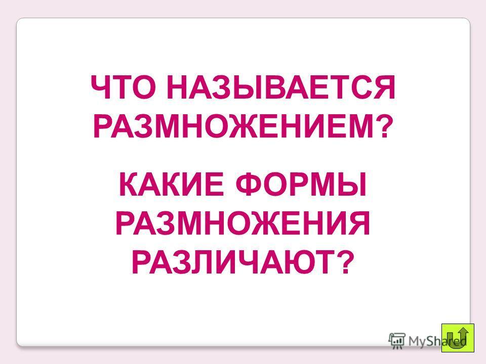 Ответы Вариант 1: б, в, г, ж, з, и, к, л Вариант 2: б, в, г, д, е, ж, з, и «5» – ошибок нет «4» – 1-2 ошибки «3» – 3 ошибки «2» – 4 и более ошибок
