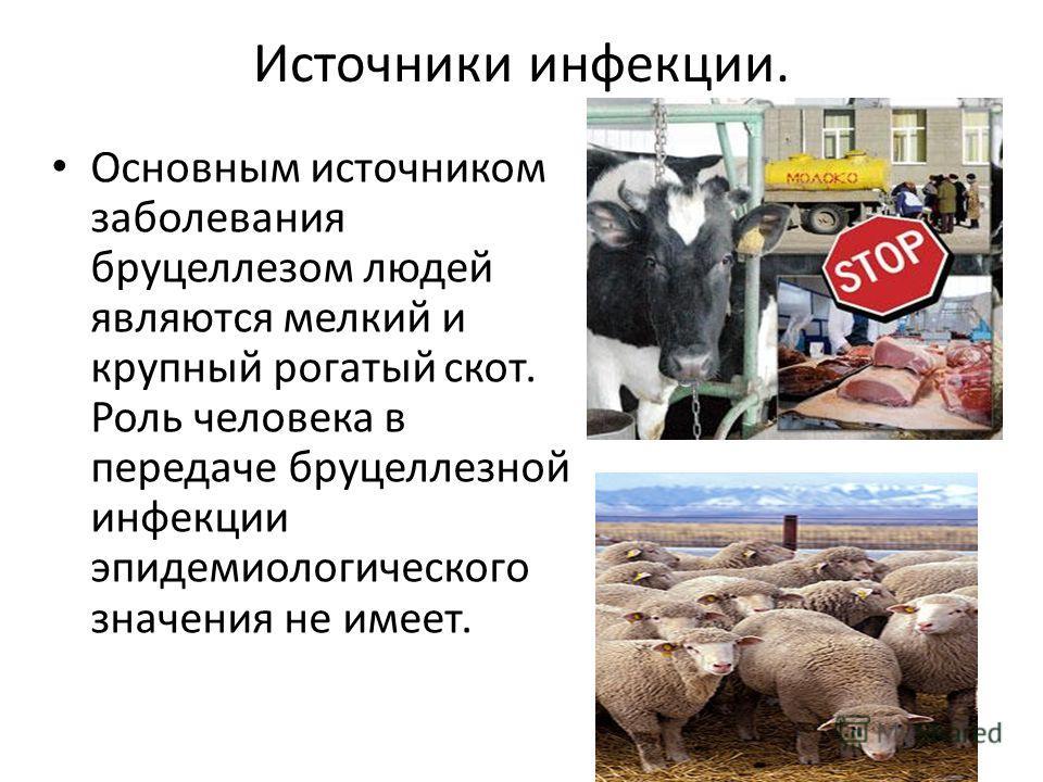 Источники инфекции. Основным источником заболевания бруцеллезом людей являются мелкий и крупный рогатый скот. Роль человека в передаче бруцеллезной инфекции эпидемиологического значения не имеет.