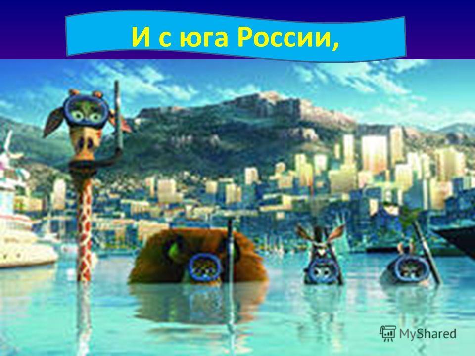И с юга России,