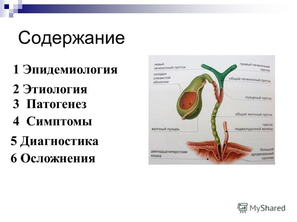 Содержание 1 Эпидемиология 2 Этиология 3 Патогенез 4 Симптомы 5 Диагностика 6 Осложнения