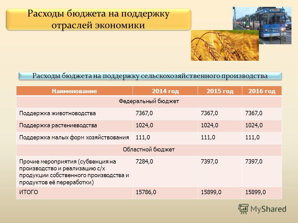 Расходы бюджета на поддержку отраслей экономики Наименование2014 год2015 год2016 год Федеральный бюджет Поддержка животноводства7367,0 Поддержка растениеводства1024,0 Поддержка малых форм хозяйствования111,0 Областной бюджет Прочие мероприятия (субве