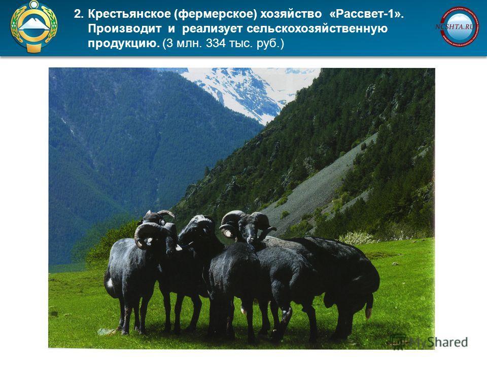 2. Крестьянское (фермерское) хозяйство «Рассвет-1». Производит и реализует сельскохозяйственную продукцию. (3 млн. 334 тыс. руб.)