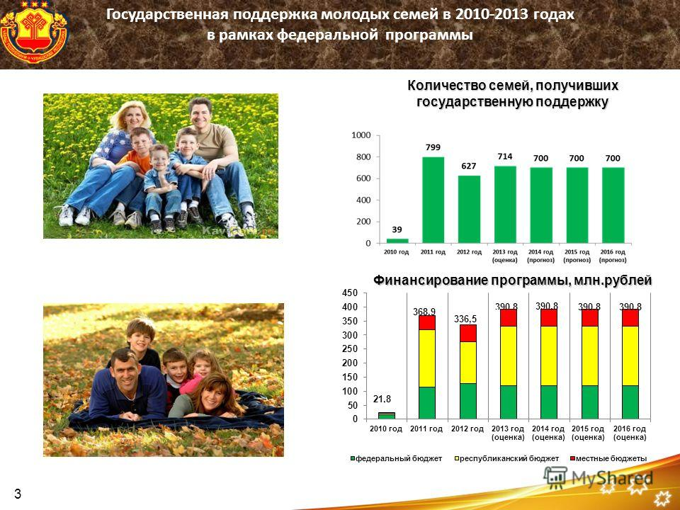 Финансирование программы, млн.рублей Количество семей, получивших государственную поддержку Государственная поддержка молодых семей в 2010-2013 годах в рамках федеральной программы 3