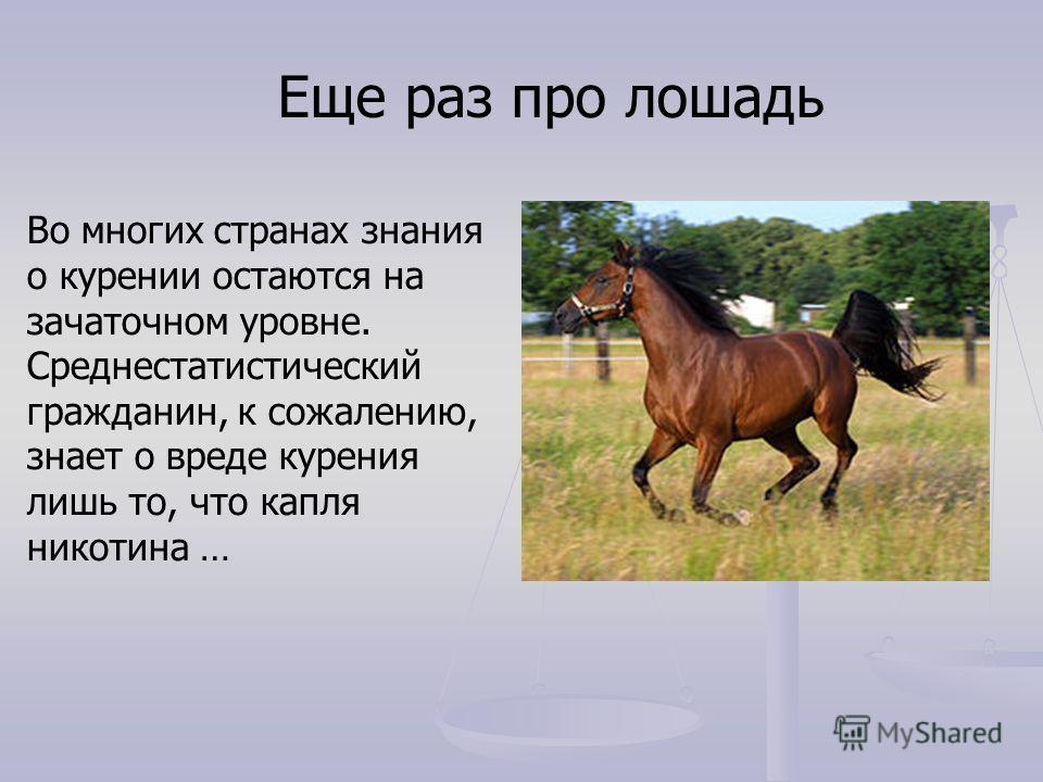 Еще раз про лошадь Во многих странах знания о курении остаются на зачаточном уровне. Среднестатистический гражданин, к сожалению, знает о вреде курения лишь то, что капля никотина …