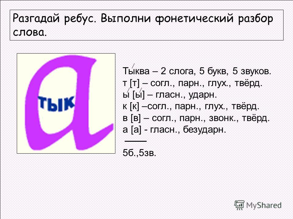 Разгадай ребус. Выполни фонетический разбор слова. Тыква – 2 слога, 5 букв, 5 звуков. т [т] – согл., парн., глух., твёрд. ы [ы] – гласн., ударн. к [к] –согл., парн., глух., твёрд. в [в] – согл., парн., звонк., твёрд. а [а] - гласн., безударн. 5б.,5зв
