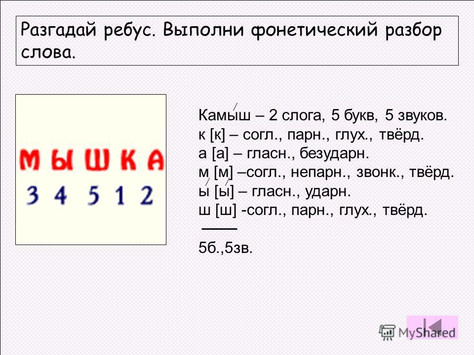 Разгадай ребус. Выполни фонетический разбор слова. Камыш – 2 слога, 5 букв, 5 звуков. к [к] – согл., парн., глух., твёрд. а [а] – гласн., безударн. м [м] –согл., непарн., звонк., твёрд. ы [ы] – гласн., ударн. ш [ш] -согл., парн., глух., твёрд. 5б.,5з