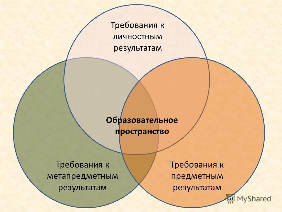 Требования к личностным результатам Требования к метапредметным результатам Требования к предметным результатам Образовательное пространство