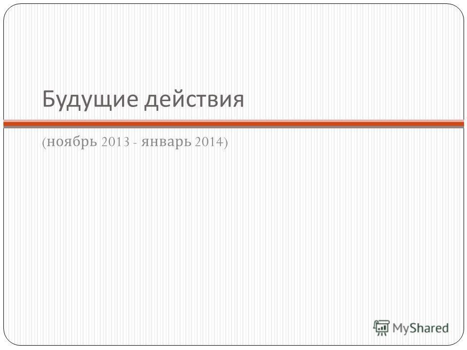 Будущие действия ( ноябрь 2013 - январь 2014)