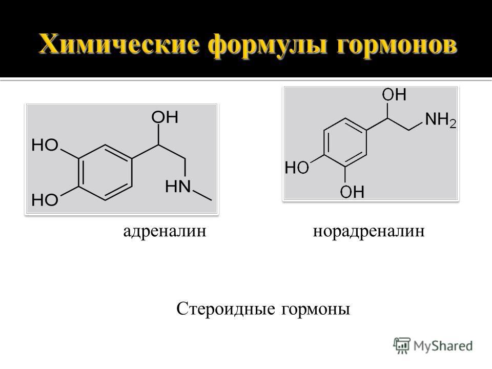 Химические формулы гормонов адреналиннорадреналин Стероидные гормоны