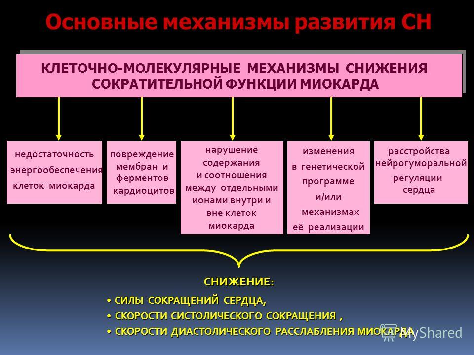 СНИЖЕНИЕ: СИЛЫ СОКРАЩЕНИЙ СЕРДЦА, СКОРОСТИ СИСТОЛИЧЕСКОГО СОКРАЩЕНИЯ, СКОРОСТИ ДИАСТОЛИЧЕСКОГО РАССЛАБЛЕНИЯ МИОКАРДА КЛЕТОЧНО-МОЛЕКУЛЯРНЫЕ МЕХАНИЗМЫ СНИЖЕНИЯ СОКРАТИТЕЛЬНОЙ ФУНКЦИИ МИОКАРДА недостаточность энергообеспечения клеток миокарда расстройст