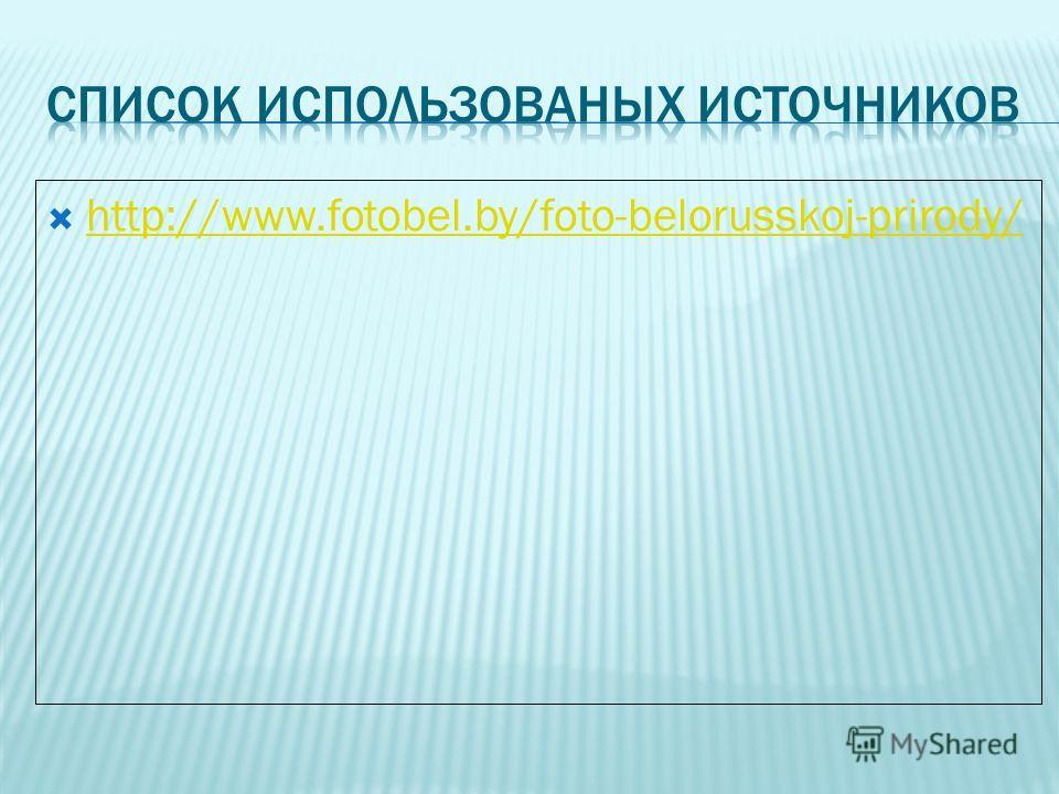 http://www.fotobel.by/foto-belorusskoj-prirody/