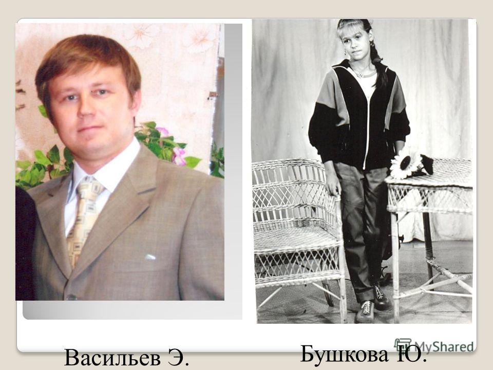Васильев Э. Бушкова Ю.
