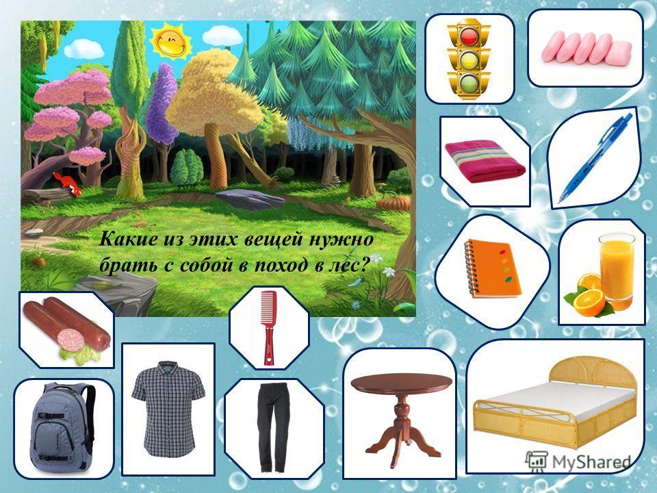 Какие из этих вещей нужно брать с собой в поход в лес?