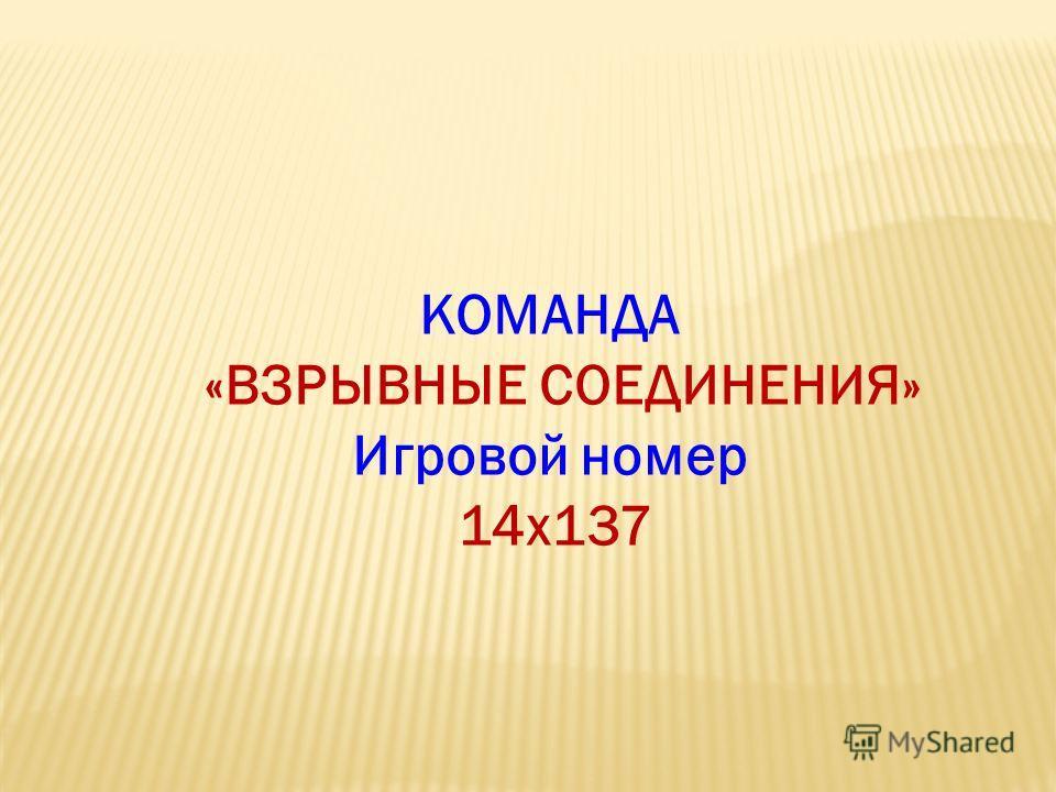 КОМАНДА «ВЗРЫВНЫЕ СОЕДИНЕНИЯ» Игровой номер 14x137