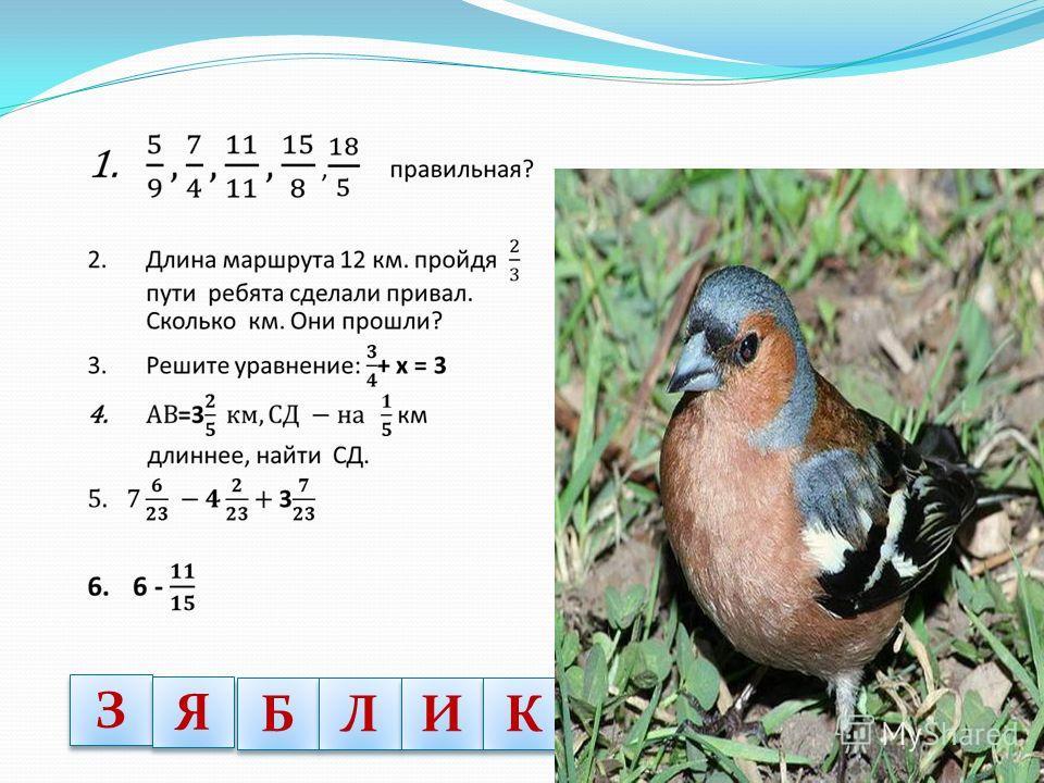 1 1 Б Б А А 24 Р Р 6 С С У У К К
