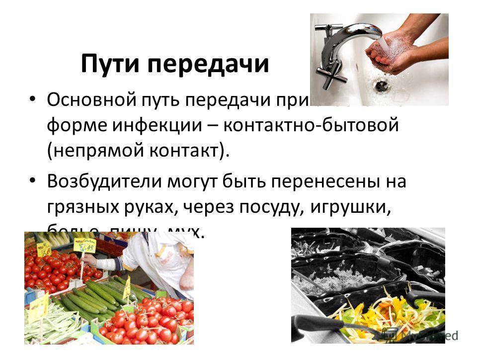 Пути передачи Основной путь передачи при экзогенной форме инфекции – контактно-бытовой (непрямой контакт). Возбудители могут быть перенесены на грязных руках, через посуду, игрушки, белье, пищу, мух.