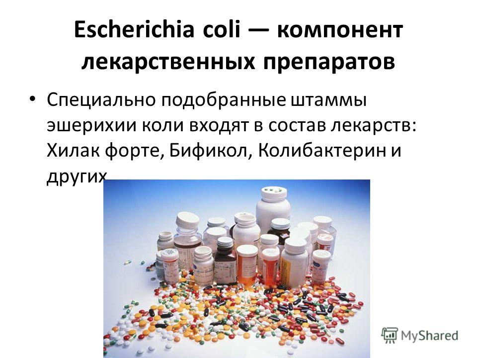 Escherichia coli компонент лекарственных препаратов Специально подобранные штаммы эшерихии коли входят в состав лекарств: Хилак форте, Бификол, Колибактерин и других.