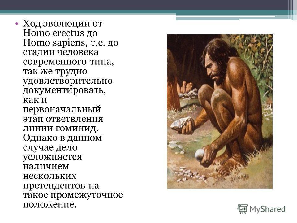 Ход эволюции от Homo erectus до Homo sapiens, т.е. до стадии человека современного типа, так же трудно удовлетворительно документировать, как и первоначальный этап ответвления линии гоминид. Однако в данном случае дело усложняется наличием нескольких