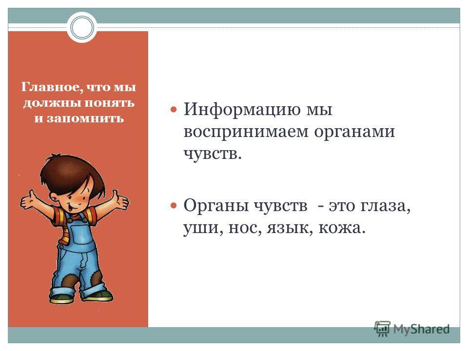 Главное, что мы должны понять и запомнить Информацию мы воспринимаем органами чувств. Органы чувств - это глаза, уши, нос, язык, кожа.