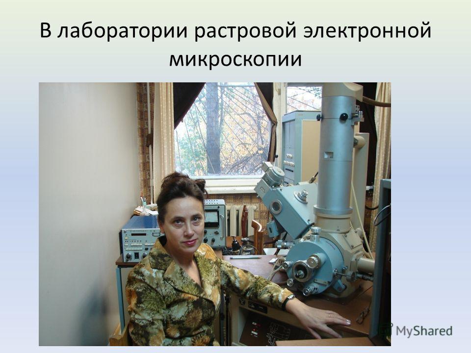 В лаборатории растровой электронной микроскопии