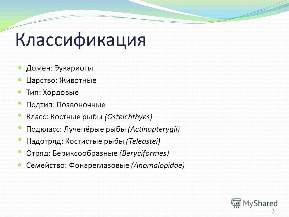 Классификация Домен: Эукариоты Царство: Животные Тип: Хордовые Подтип: Позвоночные Класс: Костные рыбы (Osteichthyes) Подкласс: Лучепёрые рыбы (Actinopterygii) Надотряд: Костистые рыбы (Teleostei) Отряд: Бериксообразные (Beryciformes) Семейство: Фона