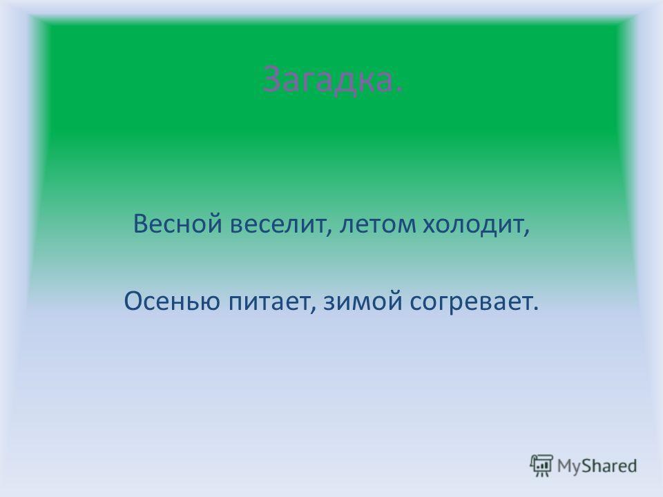 Загадка. Весной веселит, летом холодит, Осенью питает, зимой согревает.