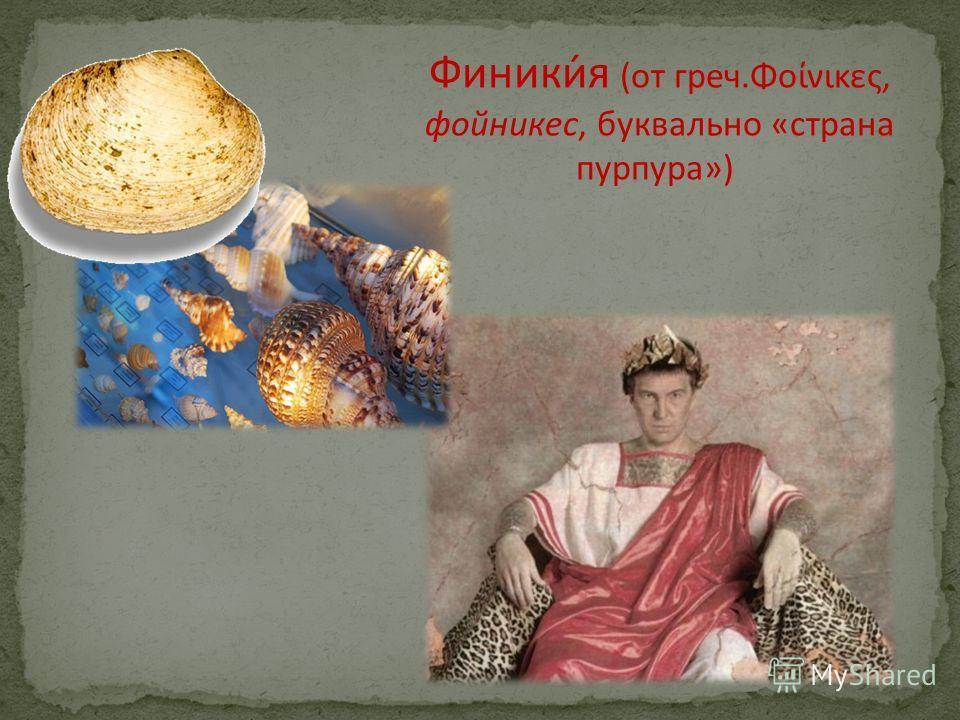 Финики́я (от греч.Φοίνικες, фойникес, буквально «страна пурпура»)