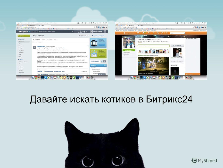 Давайте искать котиков в Битрикс24