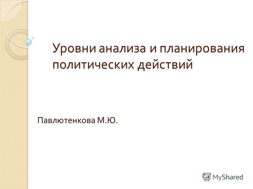 Уровни анализа и планирования политических действий Павлютенкова М. Ю.