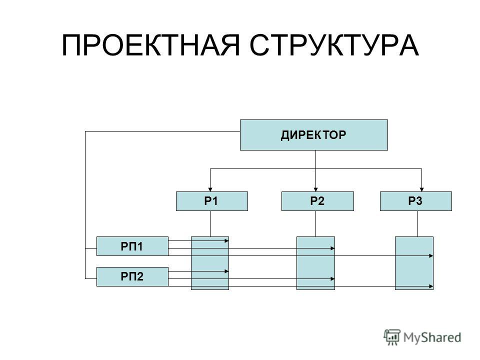 ПРОЕКТНАЯ СТРУКТУРА ДИРЕКТОР Р1Р3Р2 РП2 РП1