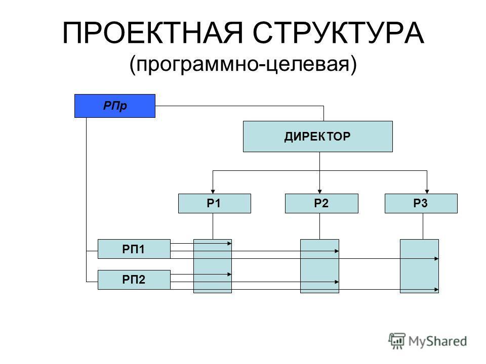 ПРОЕКТНАЯ СТРУКТУРА (программно-целевая) ДИРЕКТОР Р1Р3Р2 РП2 РП1 РПр