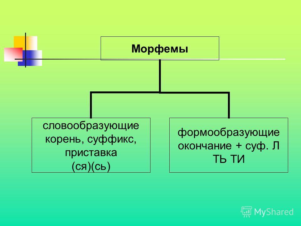 Морфемы словообразующие корень, суффикс, приставка (ся)(сь) формообразующие окончание + суф. Л ТЬ ТИ