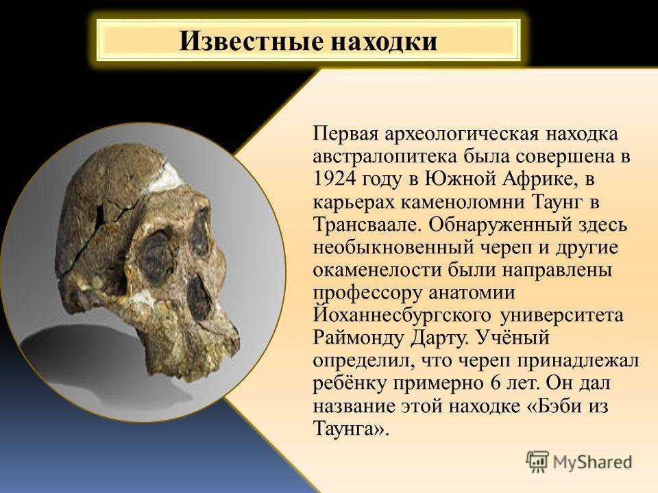 Первая археологическая находка австралопитека была совершена в 1924 году в Южной Африке, в карьерах каменоломни Таунг в Трансваале. Обнаруженный здесь необыкновенный череп и другие окаменелости были направлены профессору анатомии Йоханнесбургского ун