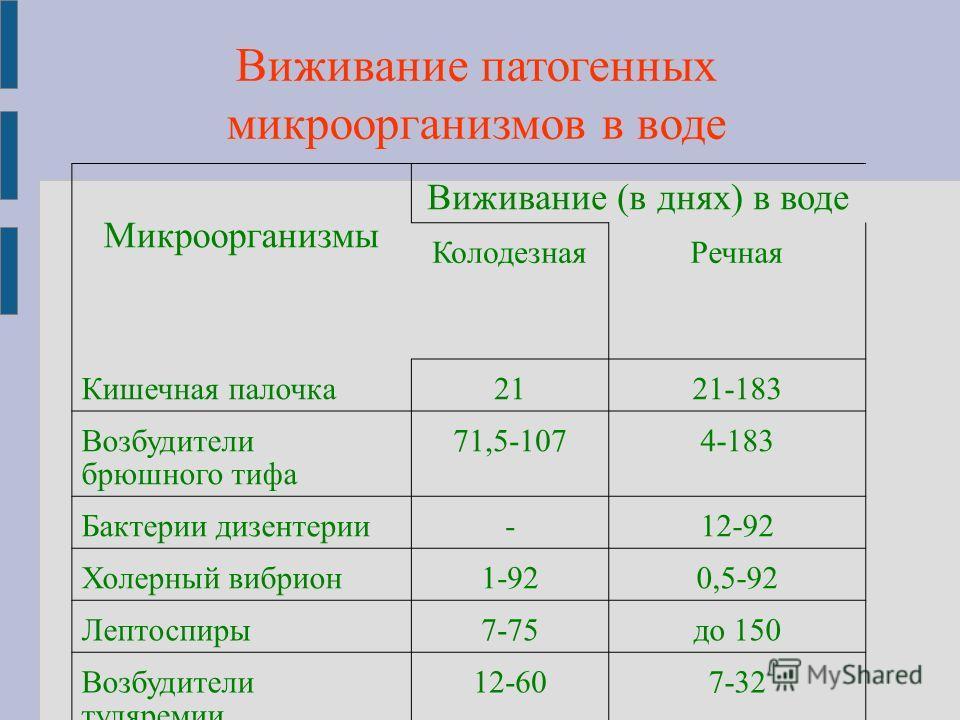 Виживание патогенных микроорганизмов в воде Микроорганизмы Виживание (в днях) в воде КолодезнаяРечная Кишечная палочка2121-183 Возбудители брюшного тифа 71,5-1074-183 Бактерии дизентерии-12-92 Холерный вибрион1-920,5-92 Лептоспиры7-75до 150 Возбудите