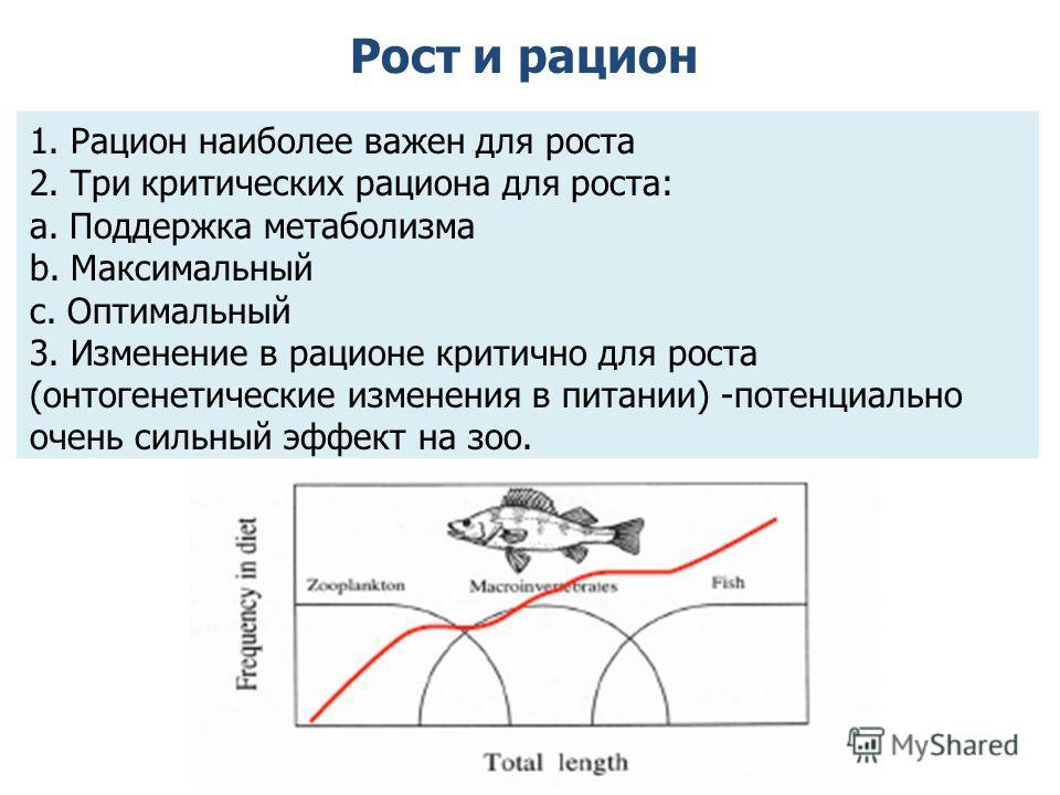 Рост и рацион 1. Рацион наиболее важен для роста 2. Три критических рациона для роста: a. Поддержка метаболизма b. Максимальный c. Оптимальный 3. Изменение в рационе критично для роста (онтогенетические изменения в питании) -потенциально очень сильны