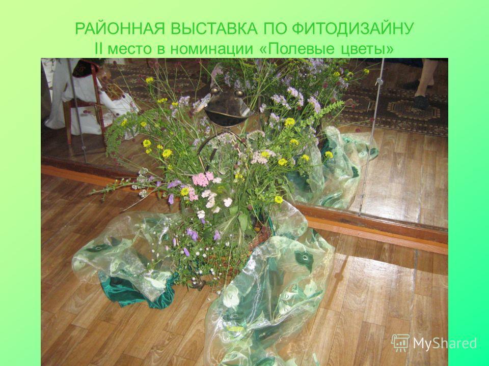 РАЙОННАЯ ВЫСТАВКА ПО ФИТОДИЗАЙНУ II место в номинации «Полевые цветы»