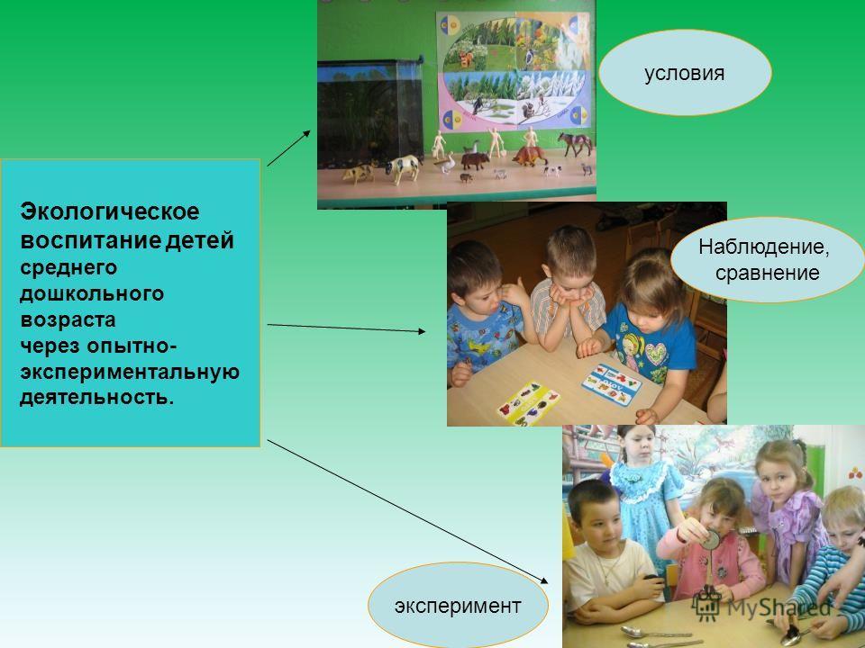 Экологическое воспитание детей среднего дошкольного возраста через опытно- экспериментальную деятельность. условия Наблюдение, сравнение эксперимент